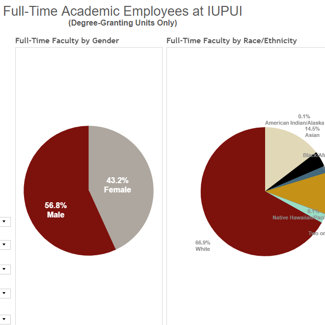 Full-Time Academic Employees at IUPUI